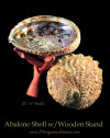 Large Abalone Shells With Wooden Stands For Incense Burning, Smudging Rituals, Offerings, Display Bowls