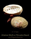 Abalone Shells With Wooden Stands For Incense Smudging, Burning Rituals, Offering Bowls