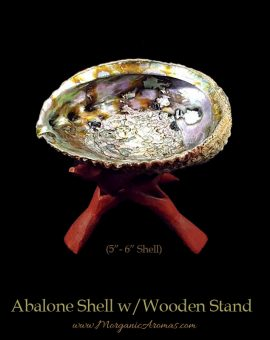 Large Abalone Shells With Wooden Stands For Charcoal Incense Burning, Smudging Rituals, Offerings Bowls